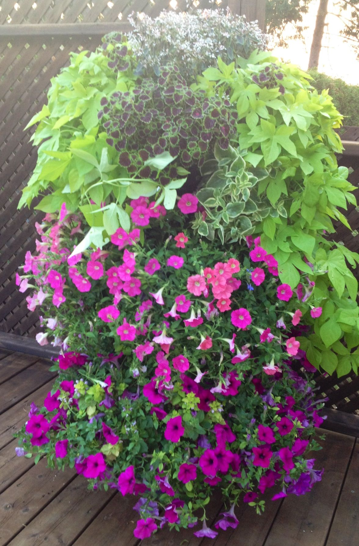 Three Tier Flower Pots Three Tier Planter Idea Gardening Pinterest Tiered