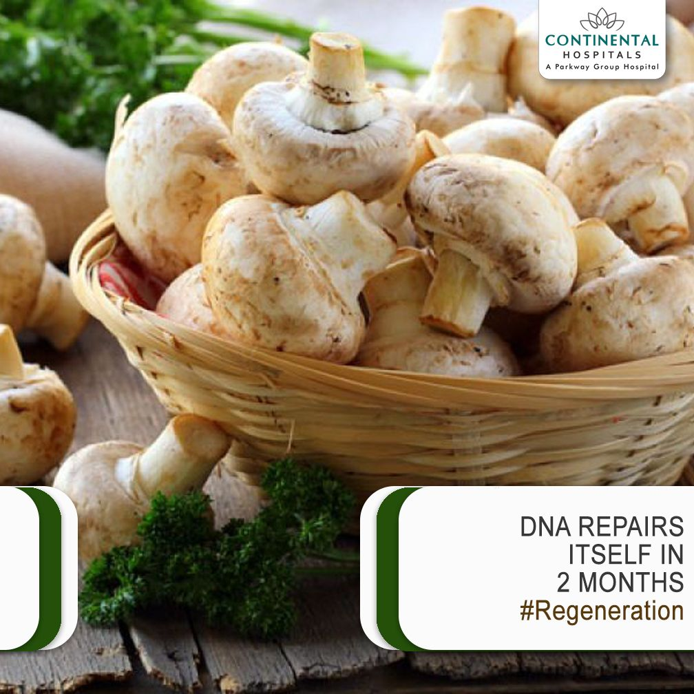 With our bodies constantly being bombarded with free radicals, the DNA undergoes significant damage. Fortunately, for us, our DNA has the ability to repair itself and it takes a little over 2 months to do so. Eating a substantial amount of mushrooms accelerates the process. #Mushrooms #Healthtips #Regeneration #Healthyfood #Healthylife