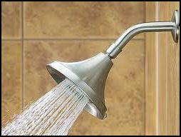 Emergency Plumber Lombard Il Low Flow Shower Head Shower Head