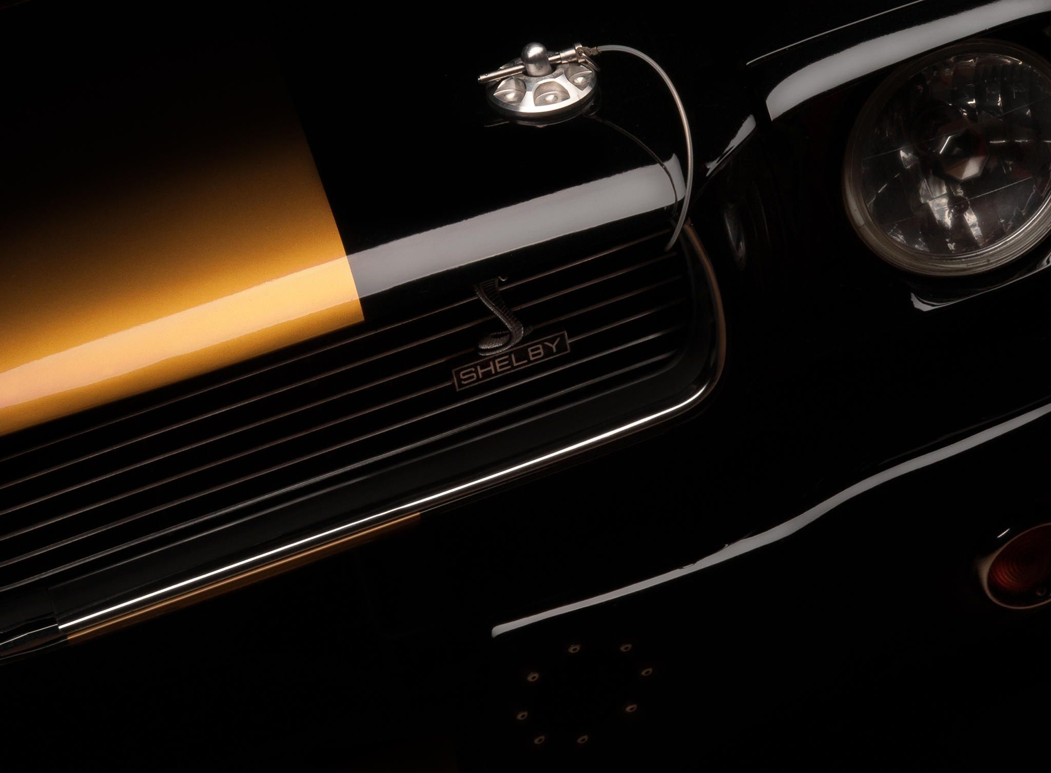 Shelby GT350H Mustang Pinterest