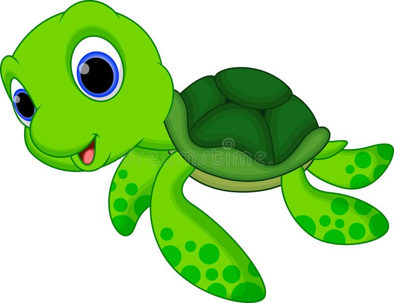 Cute Turtle Cartoon Illustration Of Cute Turtle Cartoon