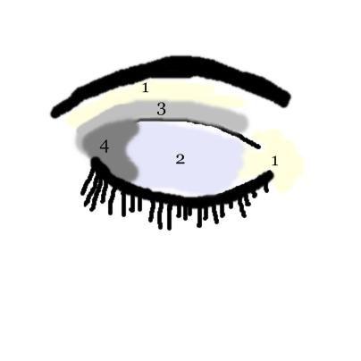 eyeshadow application diagram eyeshadow diagram makeup artist rh pinterest nz Eye Shadow Application Chart Eye Shadow for Beginners