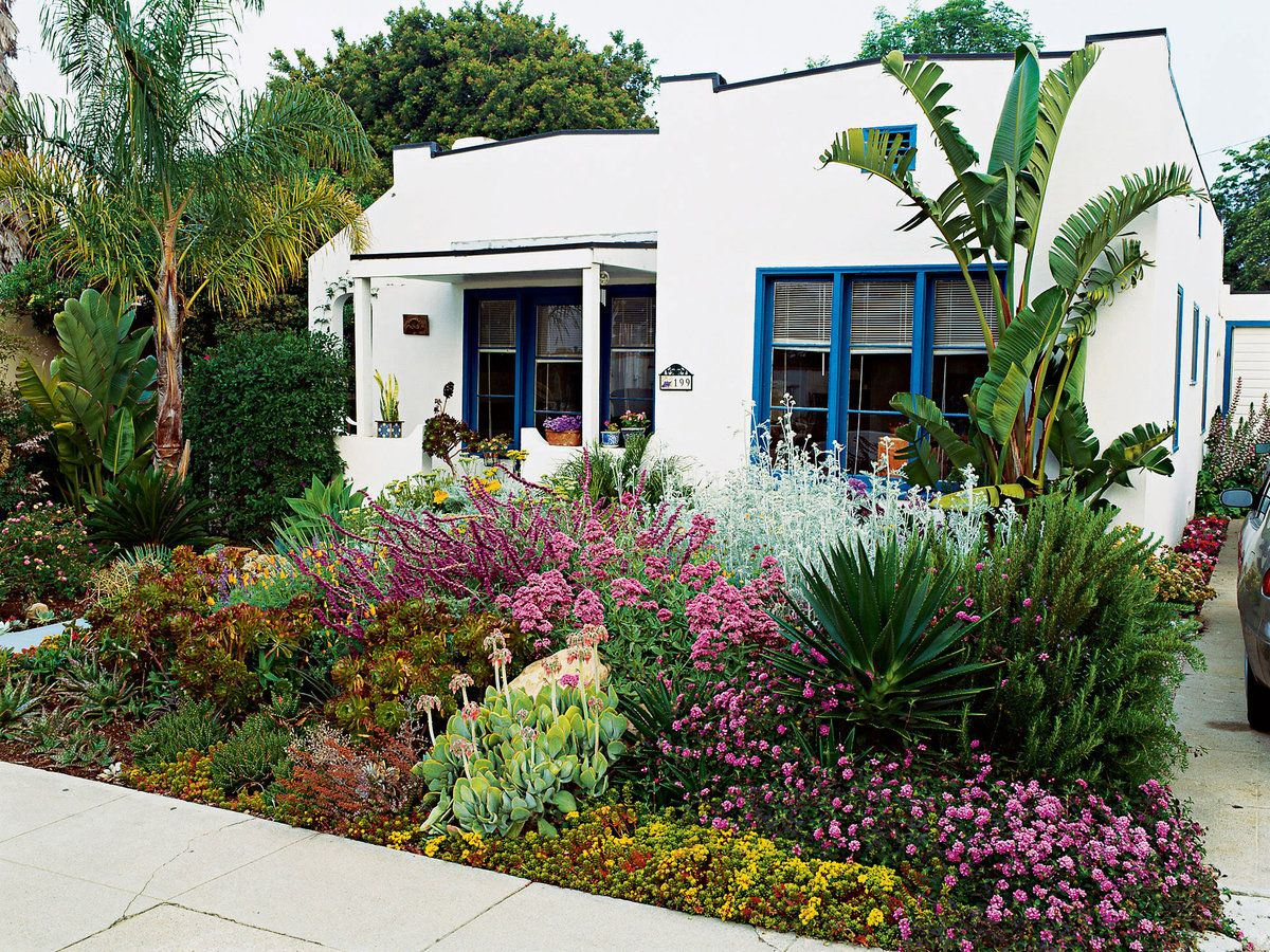 Awesome Drought tolerant Front Yard Landscape