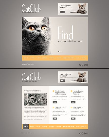 Cat Website Template  Template Website And Design Web