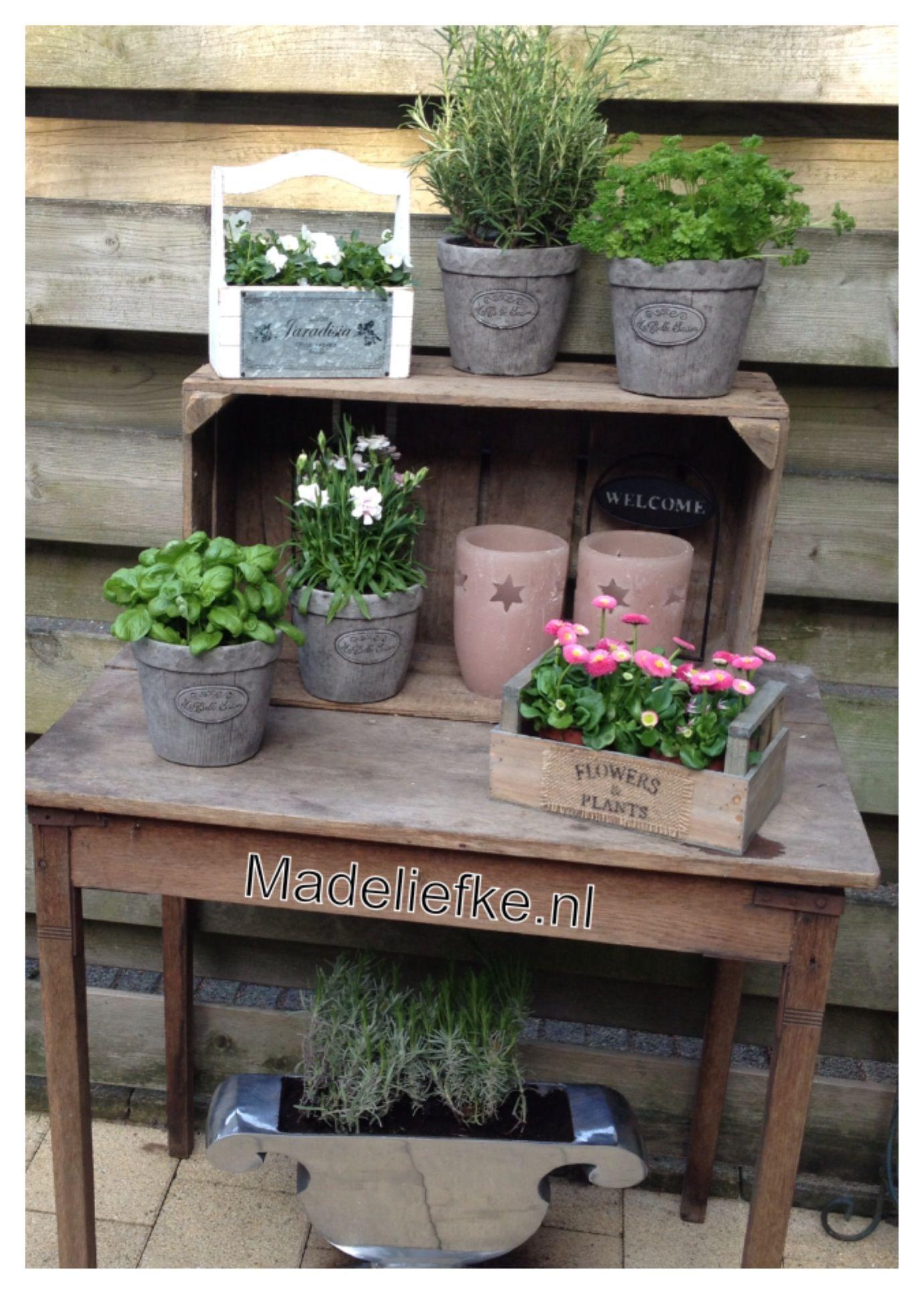 Oud tafeltje veilingkist potjes kruiden en bloemen for Huis gezellig maken