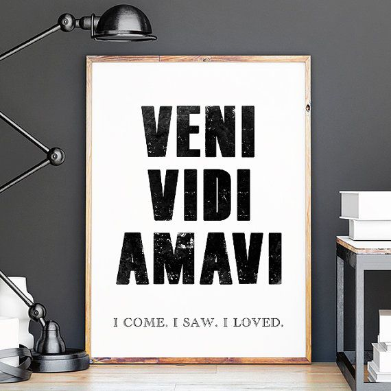 Veni Vidi Amavi, I Come, I Saw, I Loved, Illustrations, Typography Poster, Gift Idea, Office Poster, Home Poster, Gift Poster, Art Decor