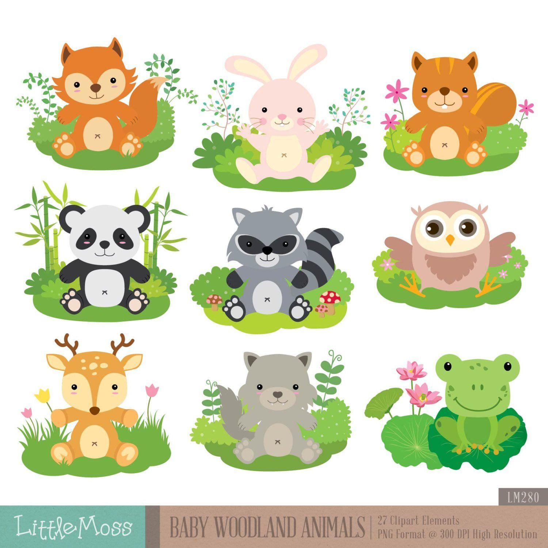 Baby Woodland Animals Digital Clipart Animais da