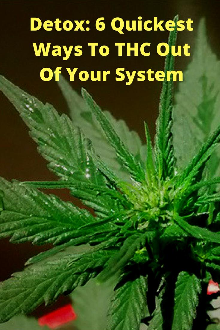 Best way to detox marijuana