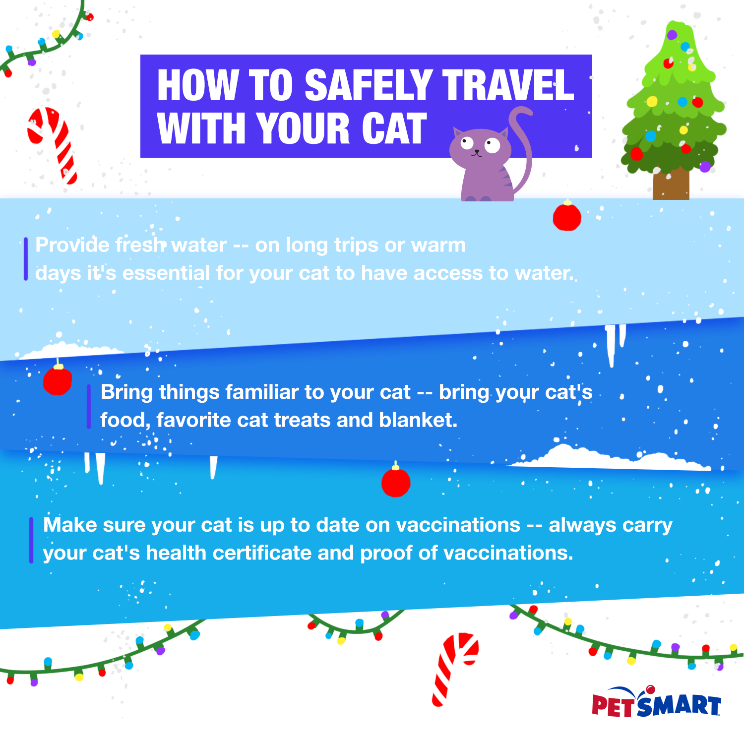 if you u0027ll be travelling with your cat this holiday a few tips