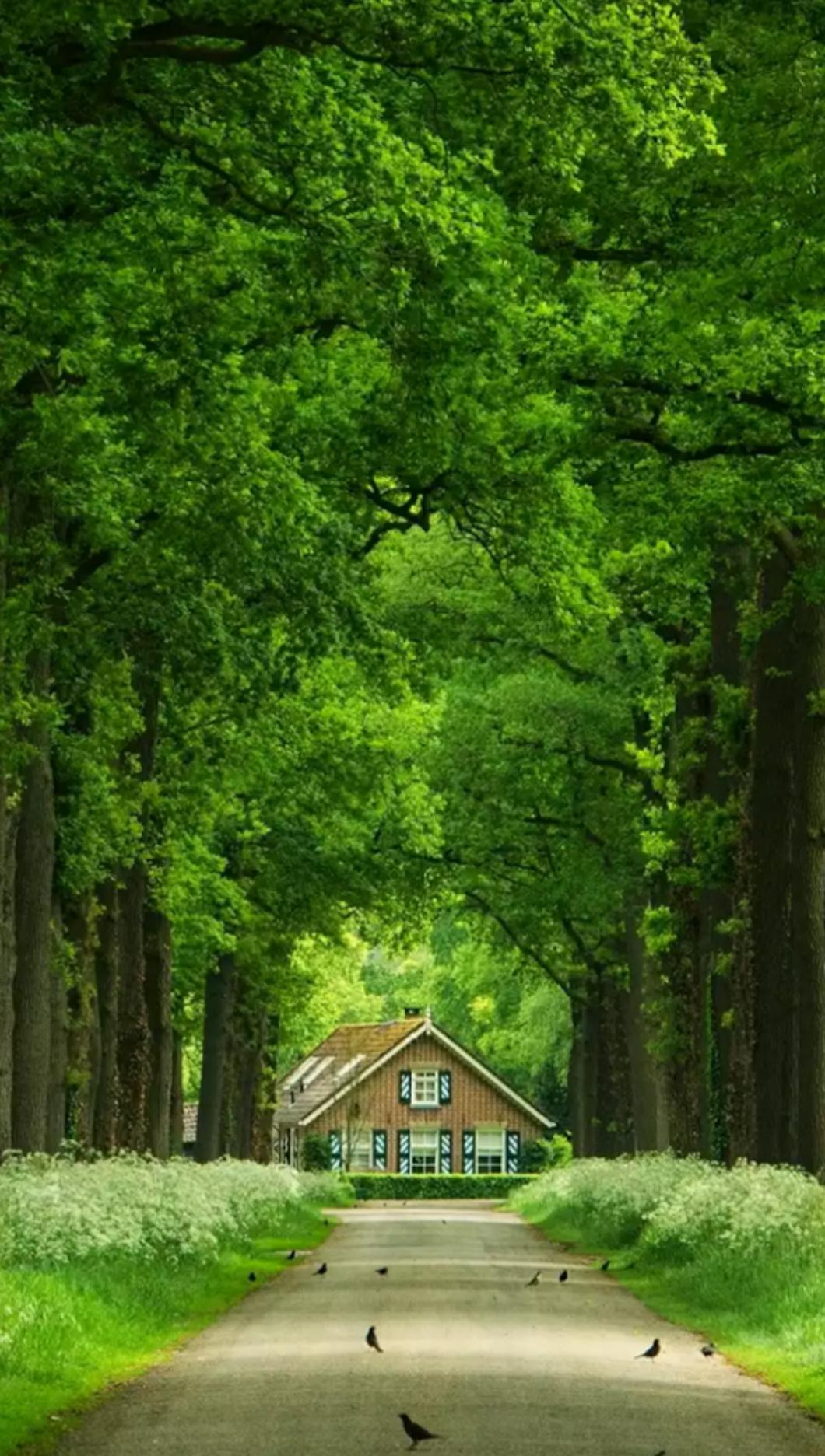 Sign in   Bilder, Natur, Wunderschön