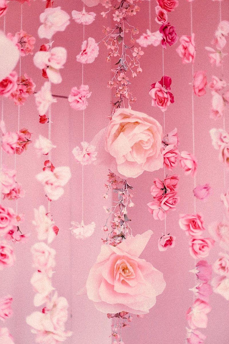 Pink Freak Pink aesthetic, Pink flowers, Pink color