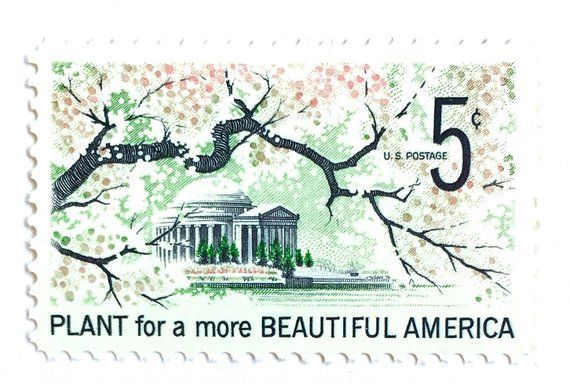 Unused Vintage Cherry Blossom Stamps Plant For A More Beautiful America 1960s Washington D