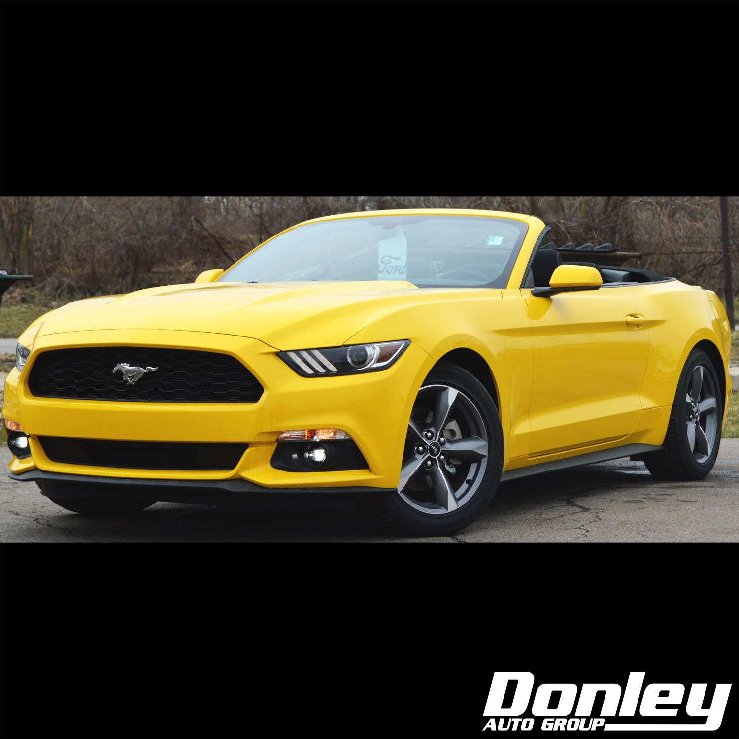 25 Donley Ford Ideas Ford Shelby Mount Vernon
