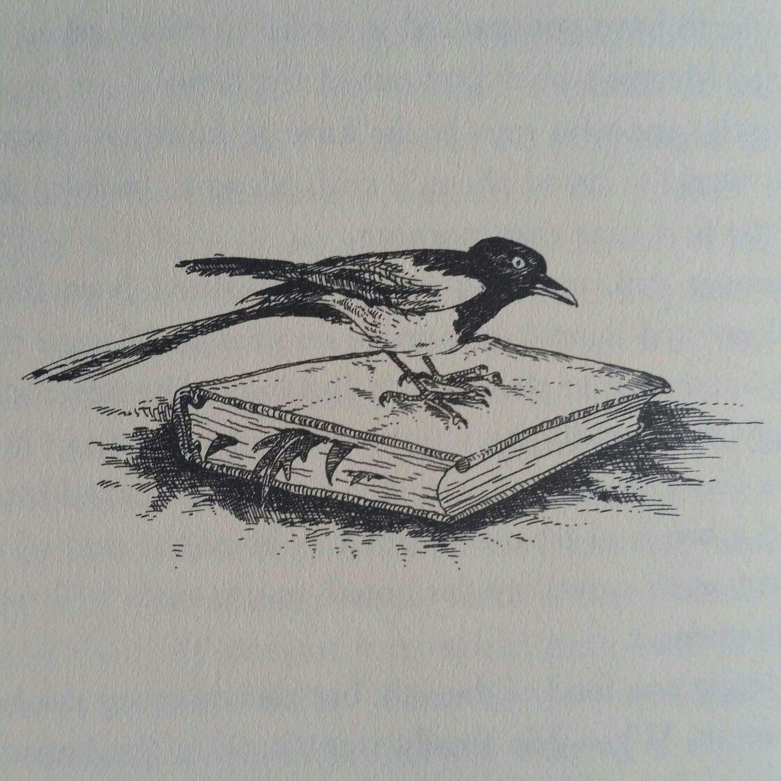 Illustration By Cornelia Funke Inkheart