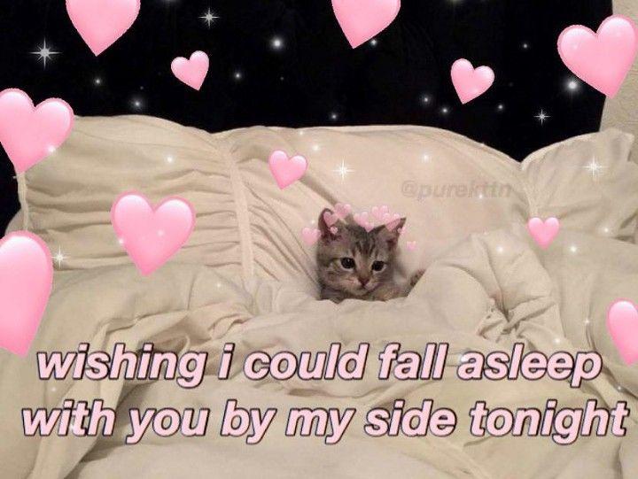 Wholesomes Cute Love Memes Cute Memes Love Memes