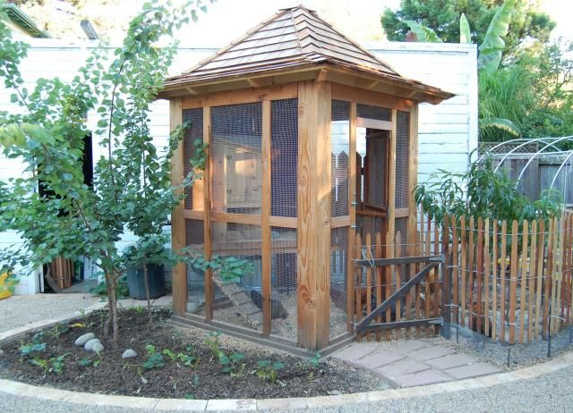 this may be the coop for my little yard but will need to have