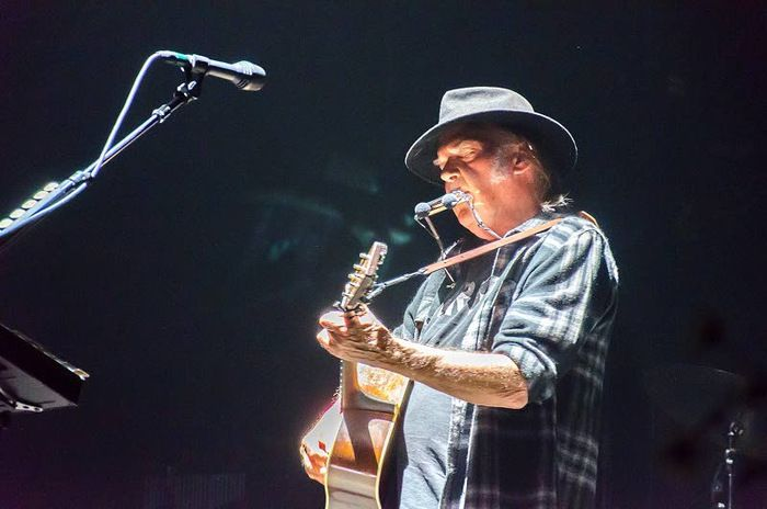 Neil Young saarnasi maataloudesta ja Monsantosta Helsingissä – Katso kuvat legendan keikasta | Helsingin Uutiset