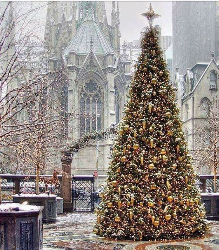 christmas in new york city st patrick s cathedral