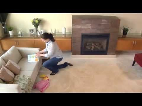 Pet Carpet Cleaners