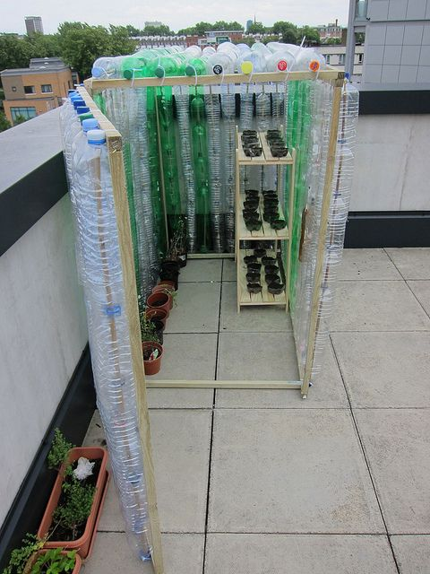 Plastic Bottles Upcycled To A Greenhouse Microsoft Team Senior School Project Plastic Bottle Green Plastic Bottle Greenhouse Diy Greenhouse Mini Greenhouse