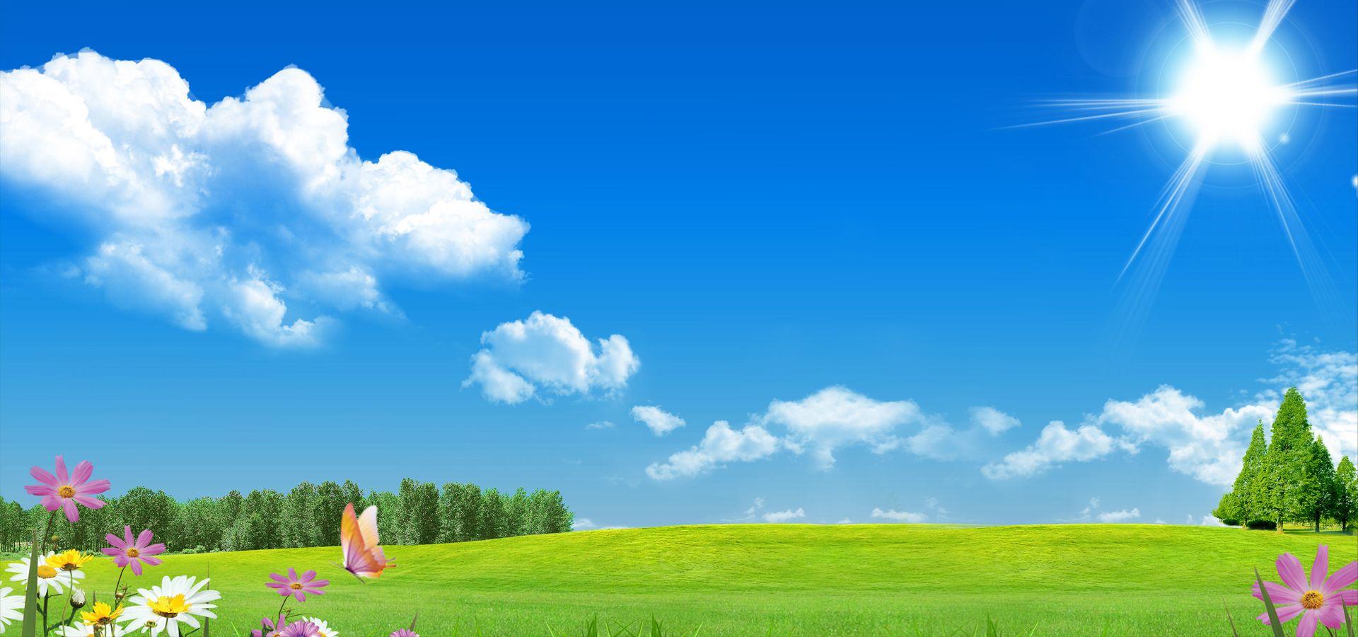 blue sky and green grass shrau craft activity