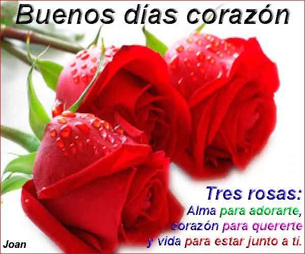 Amanecer Con Flores En Fotos De Buenos Dias Amor Tablero Mom In