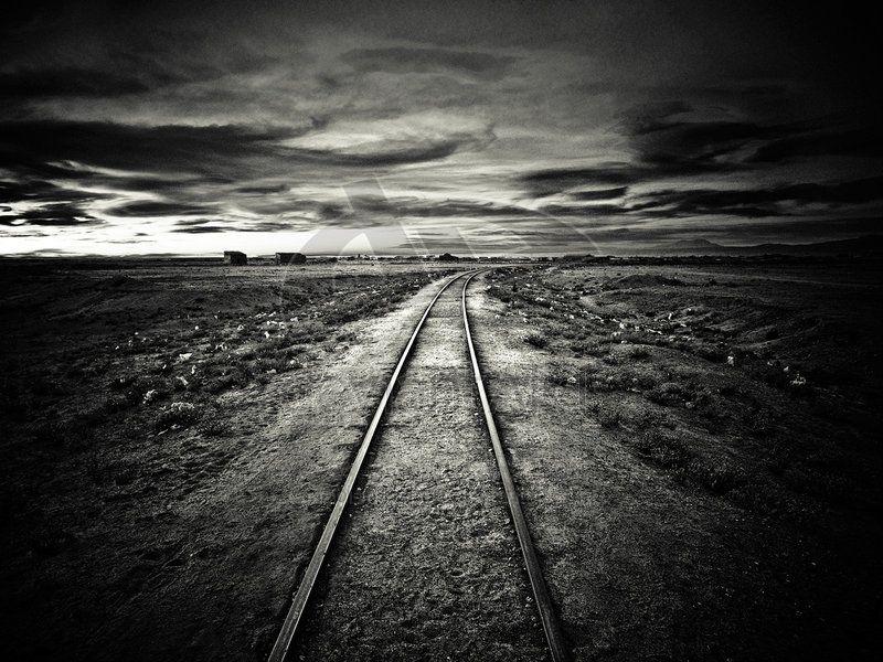 Black Rail by ~fabien-barrau