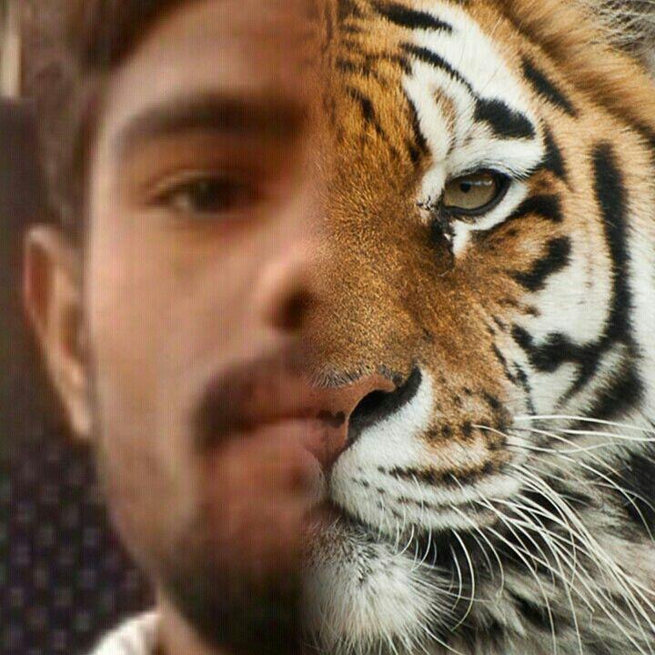 Akhil all friends lovely