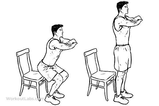 Chair Squats Squats Workout Guide Chair Exercises