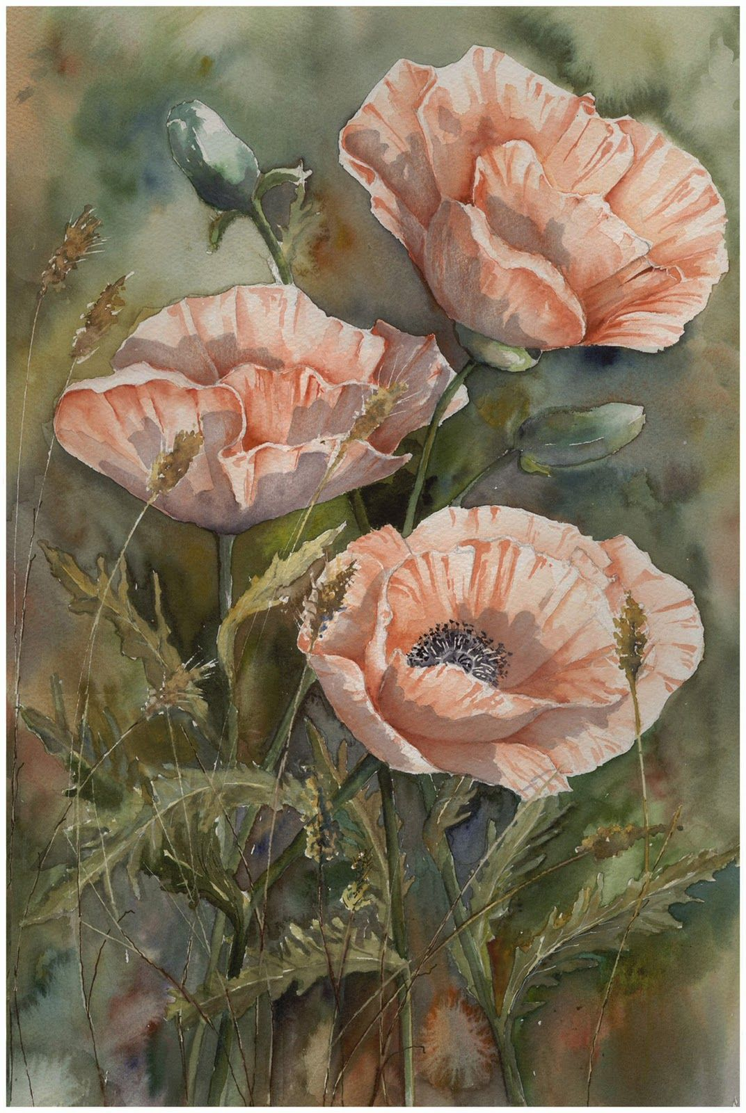 Yvonne Harry watercolor