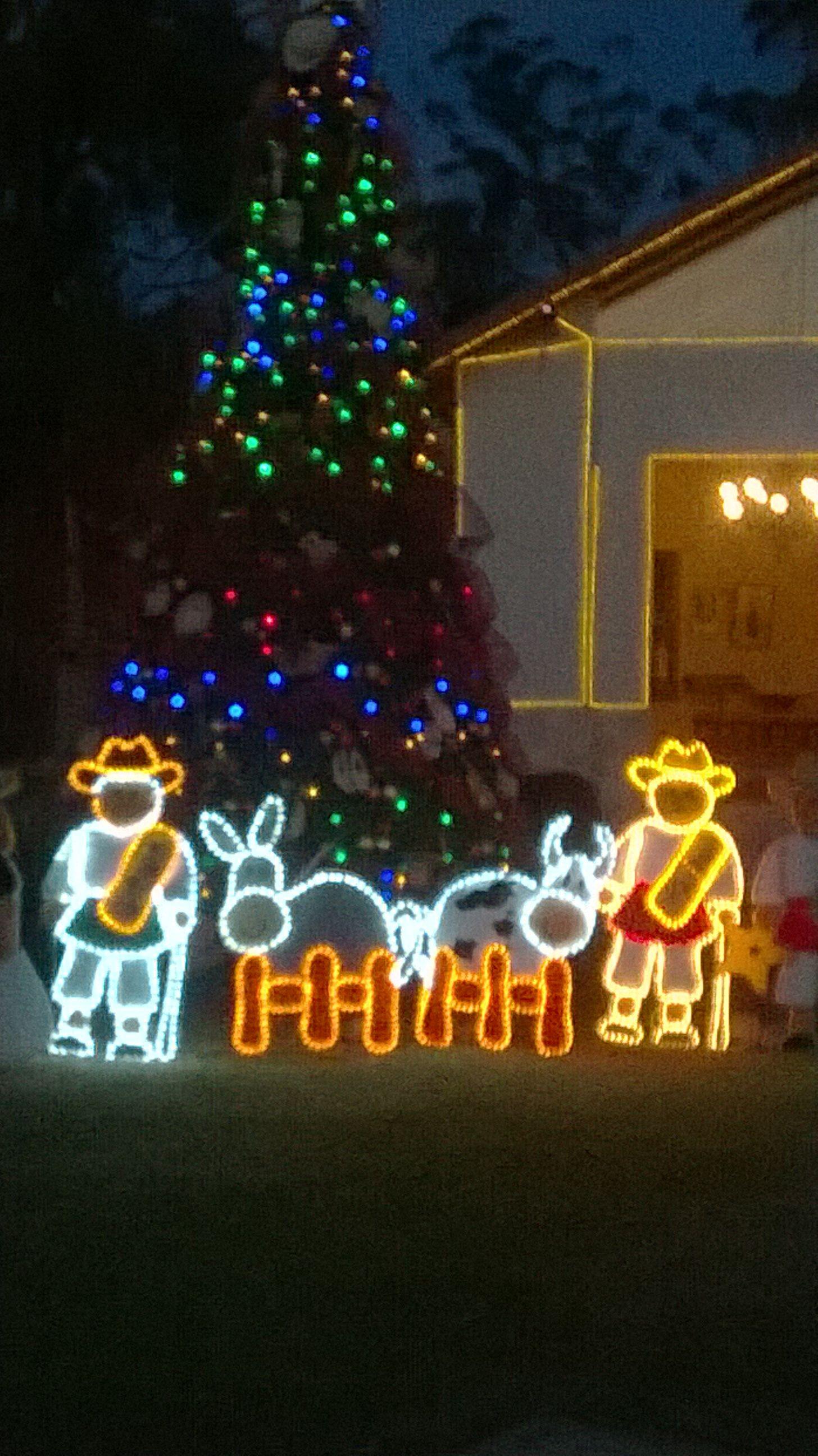 Pin von Myriam Gortney auf Christmas lights