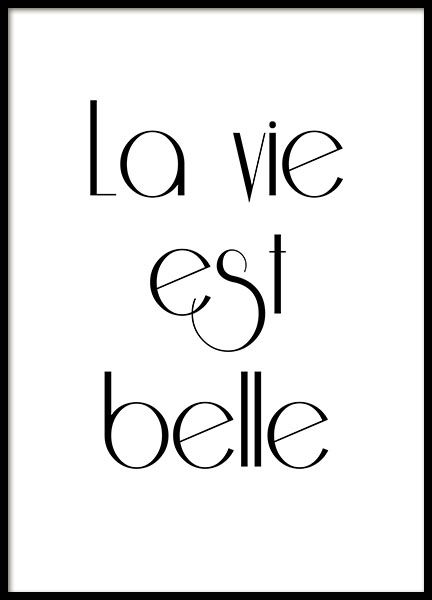 Print With French Text La Vie Est Belle Poster Frames