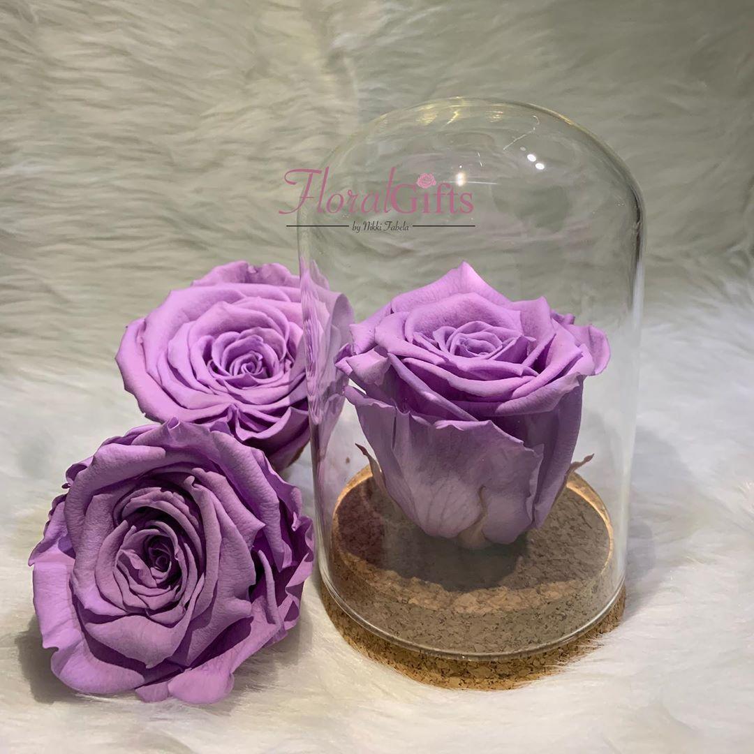 ‼NEW DESIGN ALERT ‼ ROSE thatll last for 35 YEARS