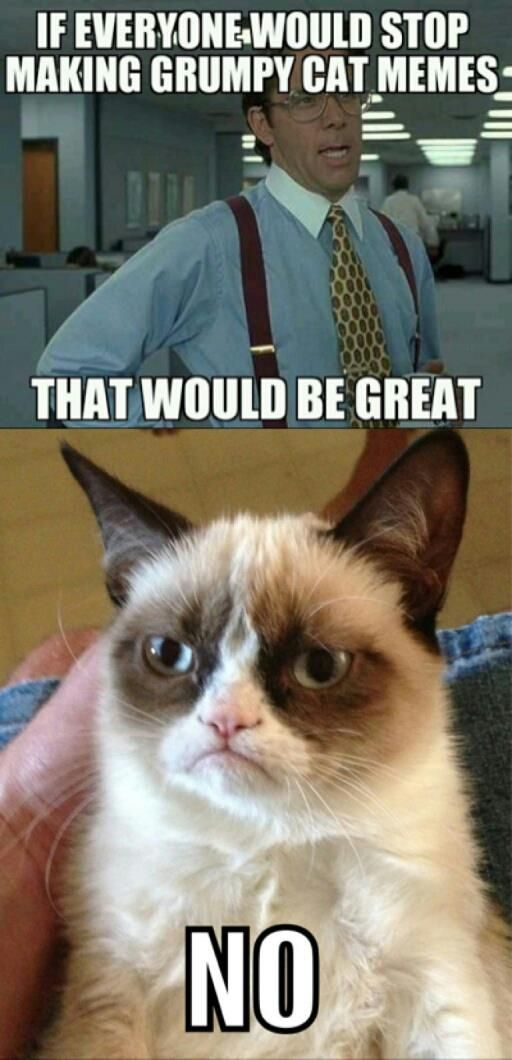 Grumpy cat meets office space yessss animals for Small room meme