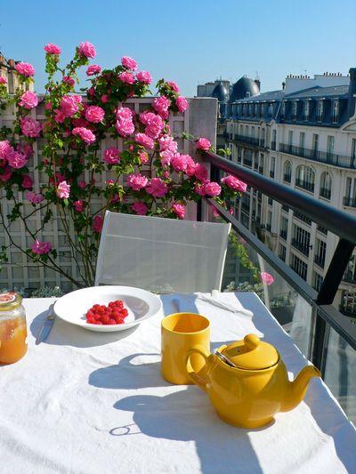 Balcon en ville : conseils pour un petit balcon avec plantes