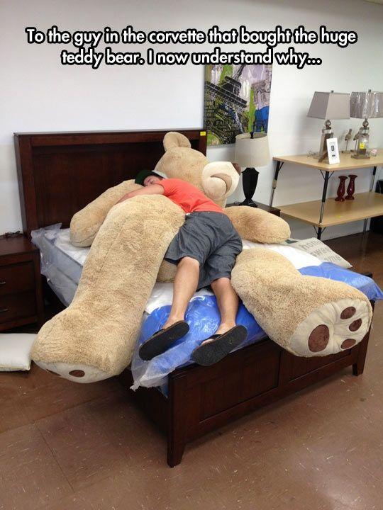 Giant Teddy Bears Are The Best Funny Teddy Bear Giant Teddy