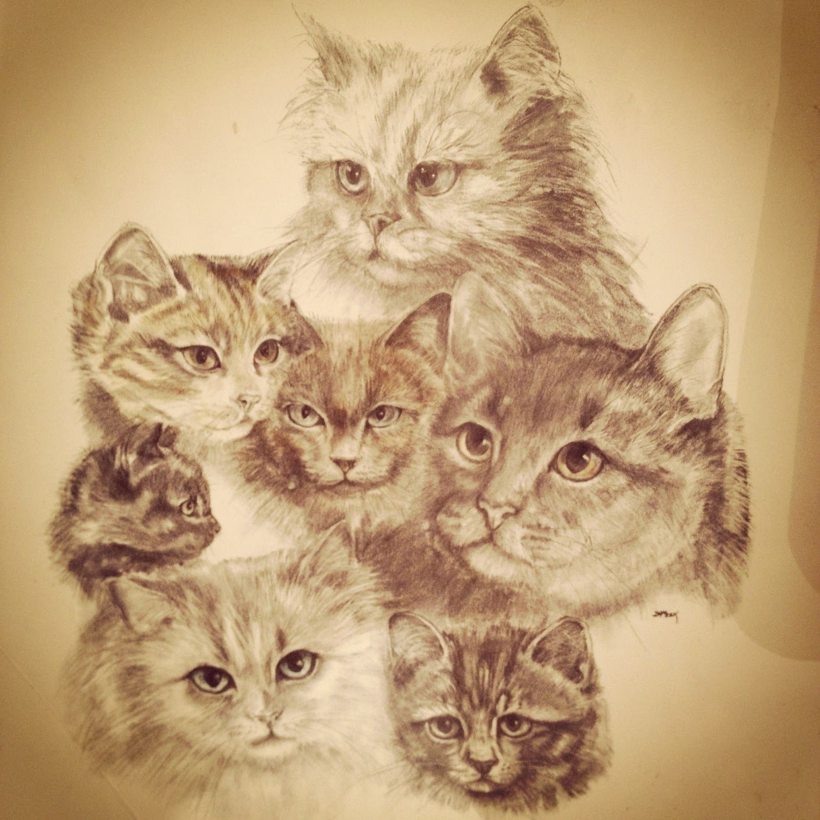 kittyheads