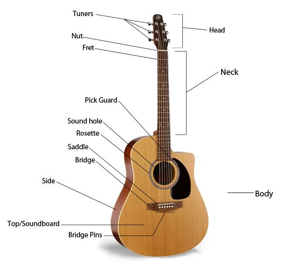 Image result for label the parts of the guitar | music stuff ...