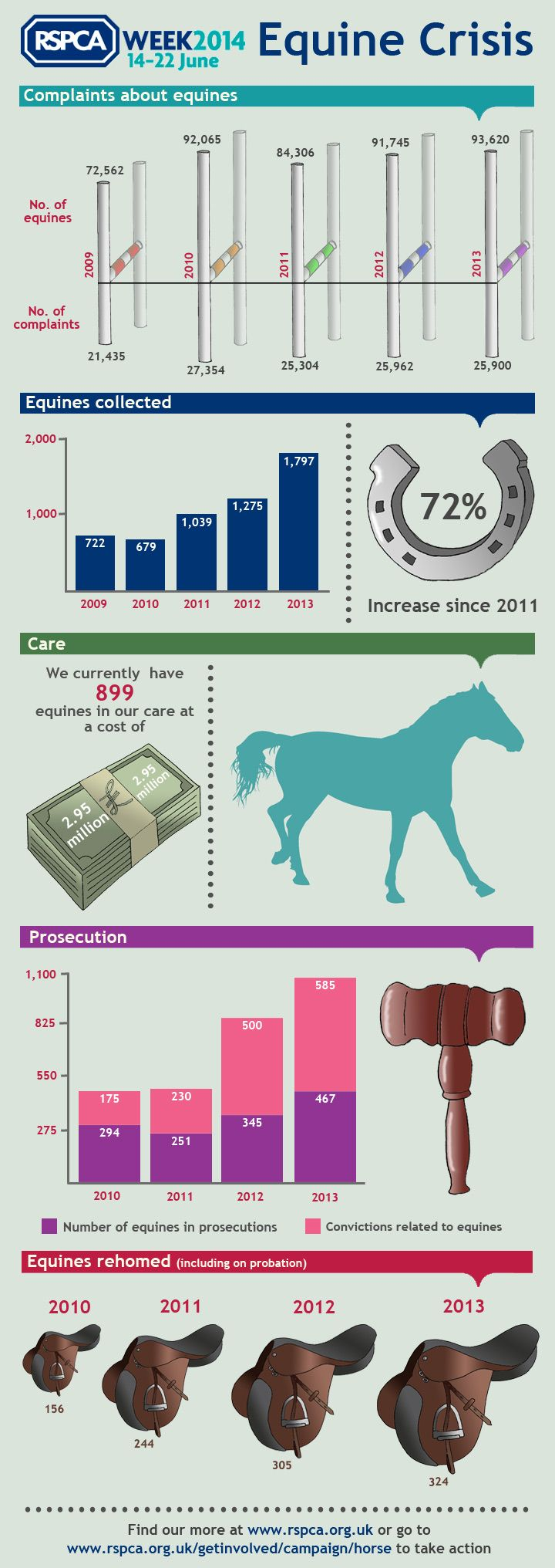 We Campaign To Better The Welfare Of All Animals Infographic