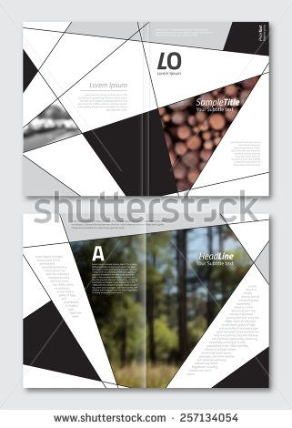Vector brochure design template Business background layout with - geometric flyer template