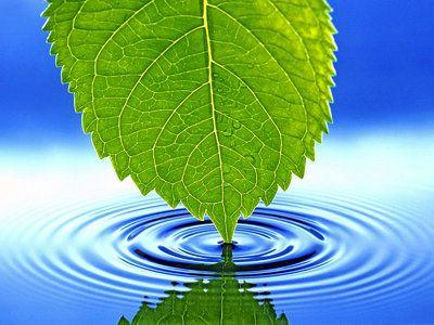 مجموعة صور رائعة لقطرات الماء صور و خلفيات الوليد Nature Desktop Desktop Background Nature Beautiful Nature Wallpaper