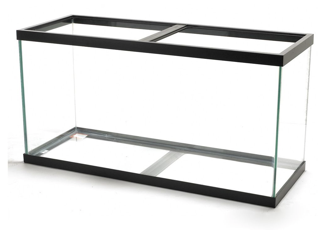 Glass fish tanks pared to acrylic fish tanks Pro s and cons of