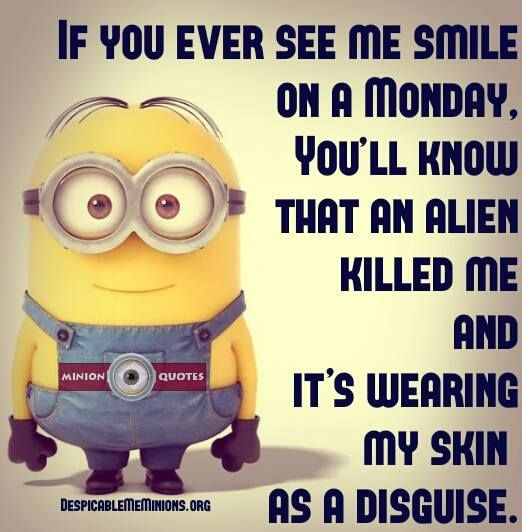 Funny Monday Quotes If i smile on a monday Monday