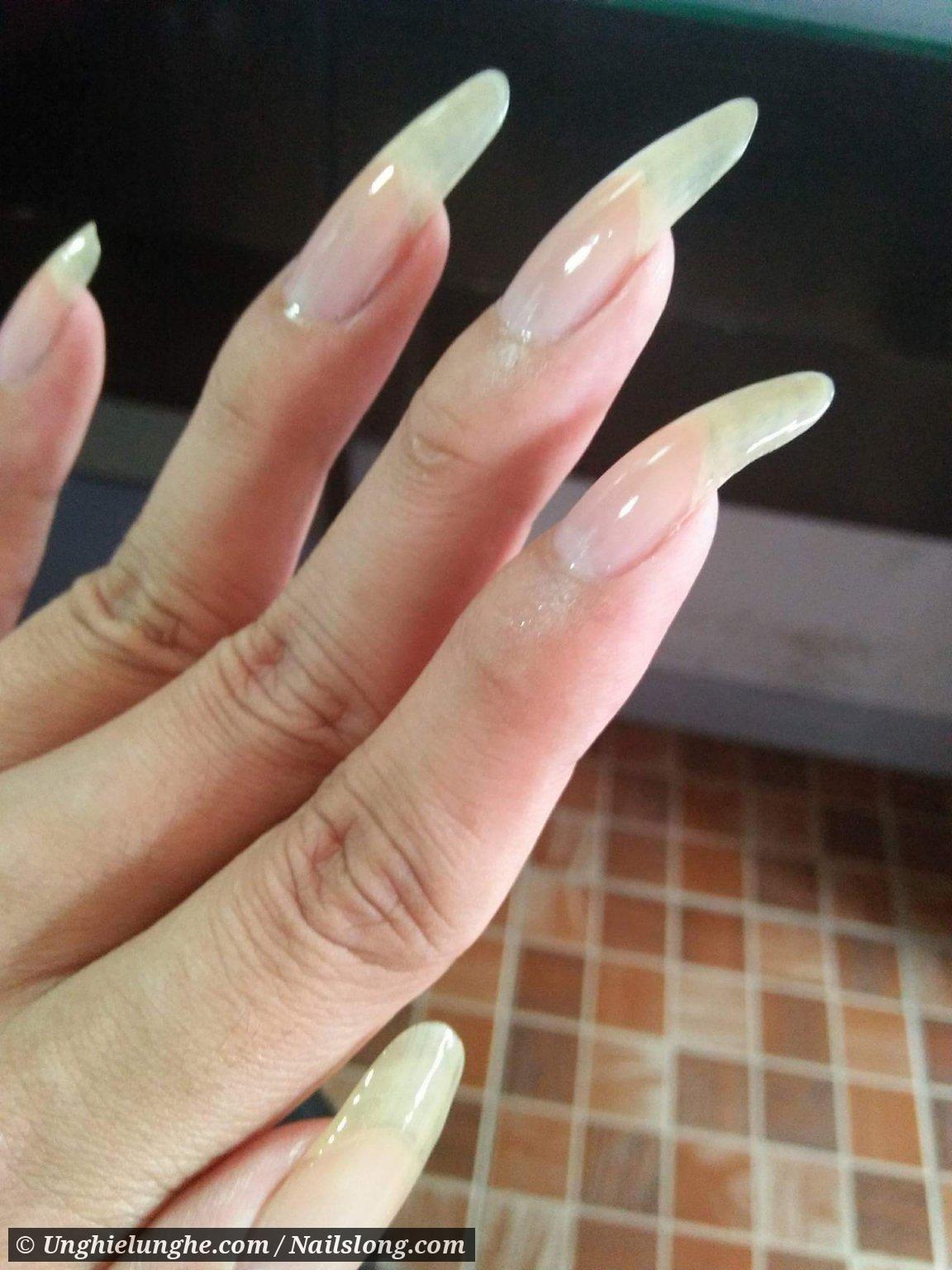 Cathalia4u Long Natural Nails Curved Nails Long Nails