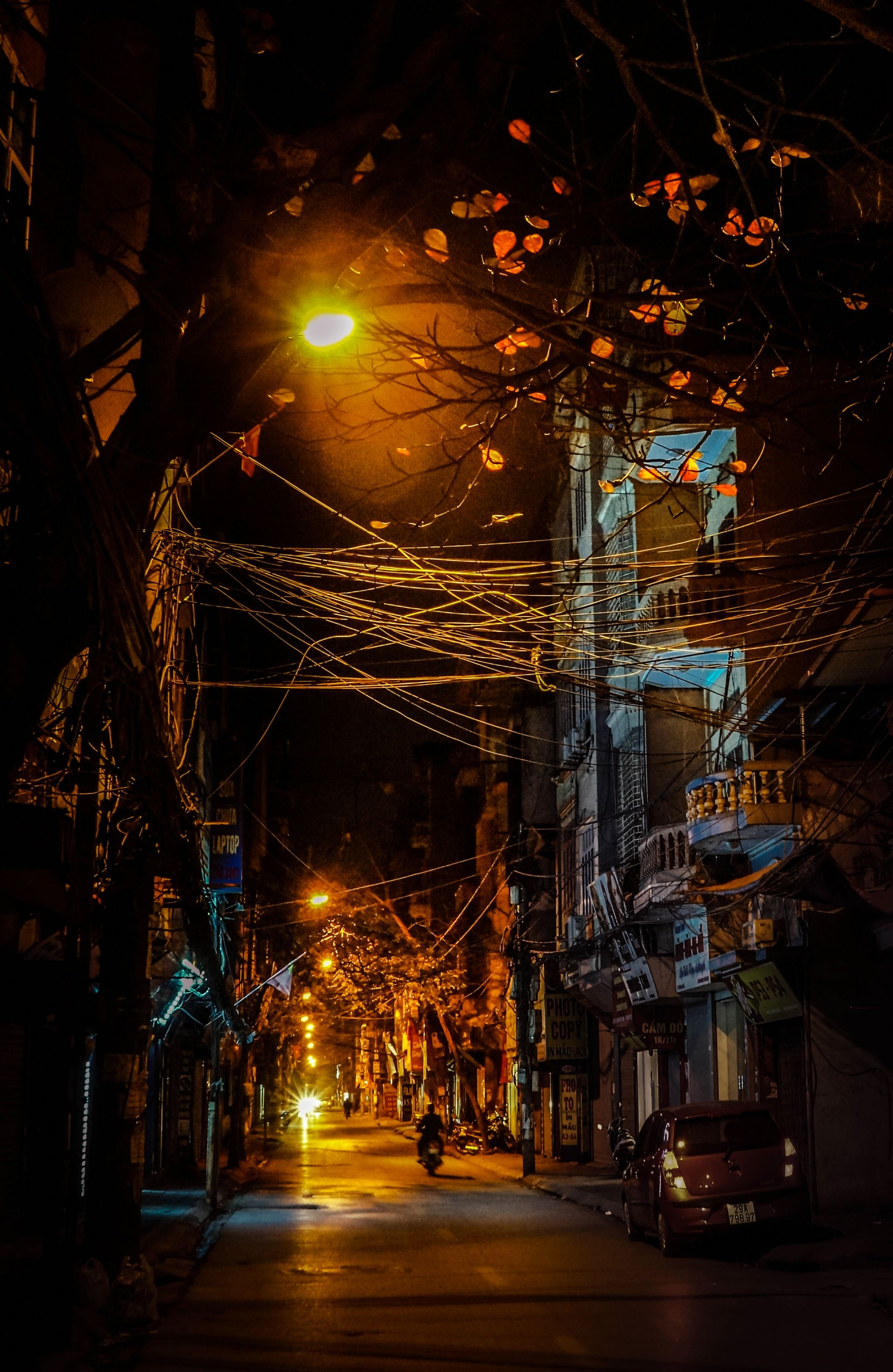 A winter night in Hanoi Visiting our city in this time of year, you will surely see the streets camouflaged in the mellow red and …   Hanoi, Vietnam, City landscape