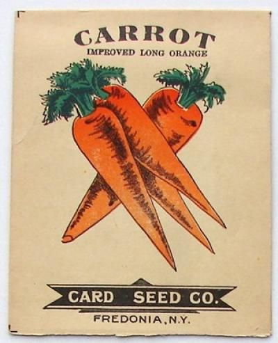 Carrot Improved Long Orange Antique Seed Packet Missing Flap