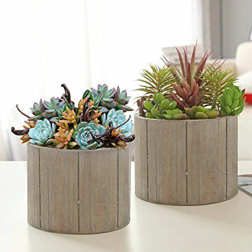 Planters Pride Rzwtr0c Selfwatering System With Fiber Grow Coconut Coir Pots Visit The Image Link More Details This Is Flower Pots Wood Planters Planters