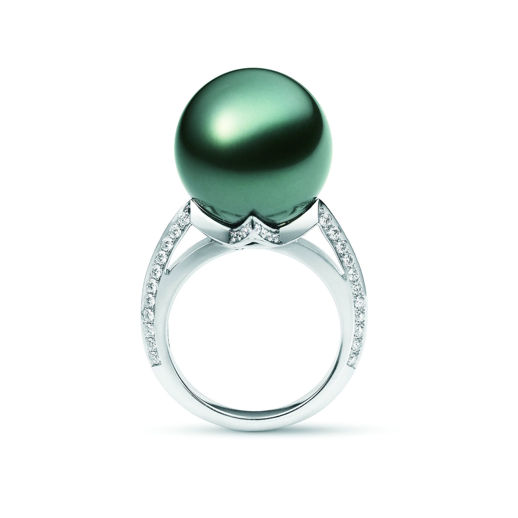 rings pearl wedding scroll ring collection akoya products