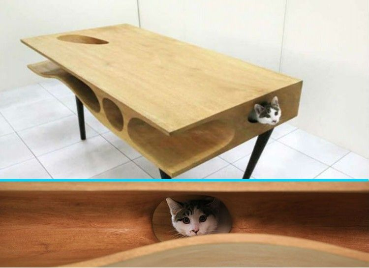 23 Most Creative Pieces Feline Furniture Every Cat Owner Needs To
