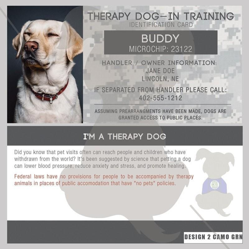 Id Card Therapy Dog In Training Easiest Dogs To Train Dog